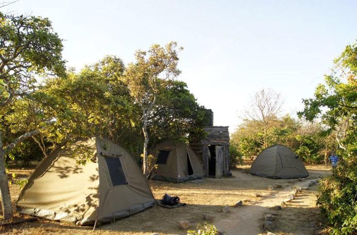 Campo tendato