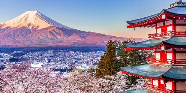 Fioritura dei cigliegi in Giappone