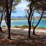 Valtur Baia dei Pini Resort - Spiaggia